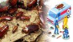 Hamam Böceği İlaçlaması