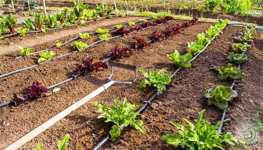 bahçe damlama sulama sistemi