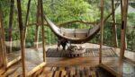 Bambu Mobilya Bakımı