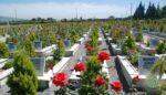 Mezar bakım